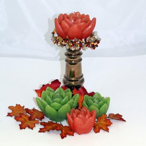 Lotus höstfärger