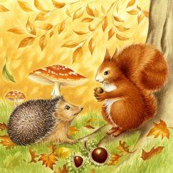 hedgehog-and-squirrel