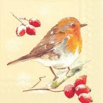 winter-robin-linen